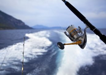 FISHING & ISLAND HOPPING GUNDUL ISLAND, LIWUNGAN ISLAND & BIRD ISLAND