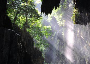 0812 9393 9797, Pantai Pangandaran & Rafting Green Canyon Plus Hotel
