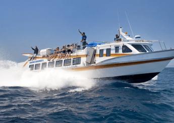 Bali Berlayar Dengan Marina Srikandi 8