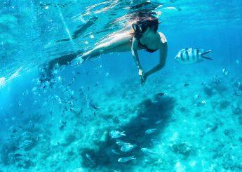 0812 9393 9797, 2h Lampung Snorkeling on Pahawang Island Start Point From Bandar Lampung Plus Accommodation