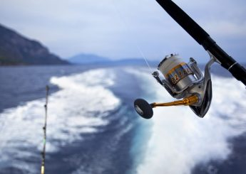 Carita Fishing & Island Hopping Gundul Island, Liwungan Island, Bird Island