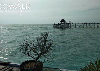 Paket Honeymoon Atau Bulan Madu Di Kepulauan Derawan 3h2m